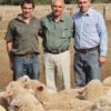 Julian Southey named National sheep Farmer of the year