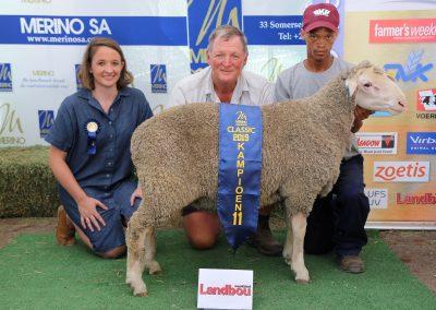 11 Landbou weekblad Geskeerde Ramlam middel (tussen 50 tot 62 kg)