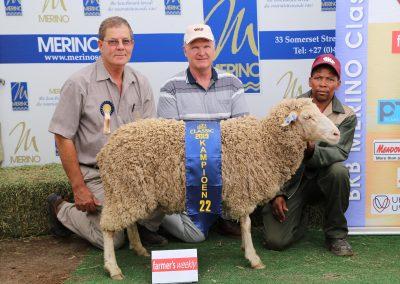 22 Farmer's weekly Twee- en viertand Ooi lig (ligter as 47 kg)