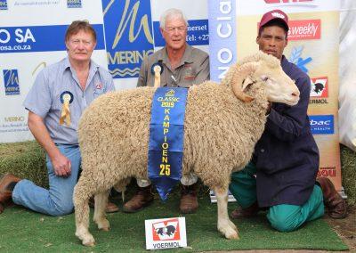 25 Voermol Twee- en viertand Ram lig (ligter as 69 kg)